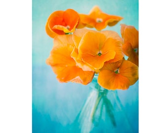 Orange Flower Still Life Photography, Floral Art Print, Orange Turquoise Home Decor, Flower Wall Art, Flower Photography, Neon Art