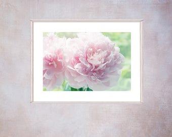 Pink Peony Art,  Peony Photograph, Flower Art, Peony Fine Art Print, Pink Bedroom Wall Decor