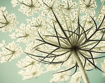 Queen Anne's Lace Photograph, Cottage Chic Decor, Wedding Shower Gift, Pastel Wall Art,  Flower Photography, White Mint Decor,  Still Life