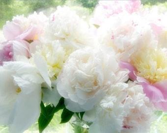 Peony Art,  Still Life Photography, Flower Wall Decor, Floral Art Print, Peony Photograph, White, Pink
