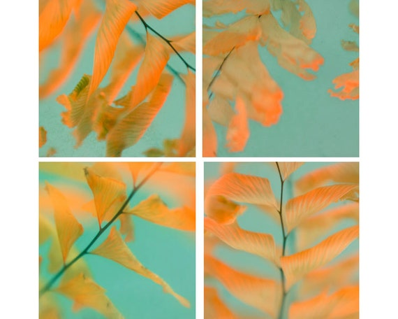 Abstract Art Print Set Four Print Set Neon Wall Decor Fern