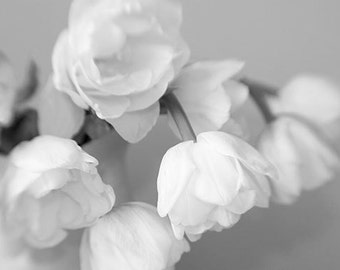Black and White Photography,  Tulip Print,  Still Life  Photography, Floral Wall Decor, Flower Photography