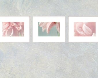 Pink Dahlia Print Set, Three Photographs Set, Pastel Wall Art, Flower Nursery Decor, Tryptic