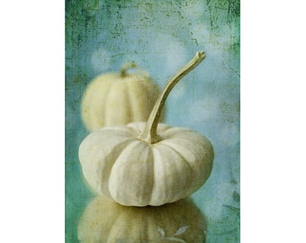 White Pumpkin Photograph, Food Photography,  Still Life, Kitchen Wall Art