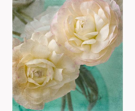 Ranunculus art print pink white flower photograph floral etsy image 0 mightylinksfo