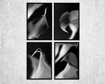 Calla Lily Print Set, Four Black and White Abstract Photographs, Modern Wall Art,