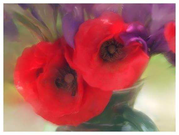 Red poppy card floral card blank card flower photography mightylinksfo