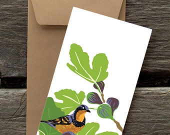 BF142: Varied Thrush in Fig Tree - Pack of 8 eco-friendly flat cards