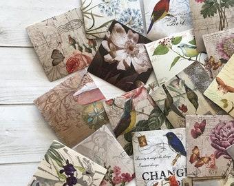 Nature Stickers - Set of 40 - Bird Labels, Junk Journal Paper Ephemera, Planner Supplies, Craft Supplies, Nature Ephemera, Flower Stickers