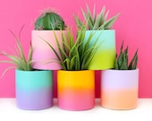 Small Gradient Ombre Planter - Cement or Ceramic - Indoor or Outdoor planter - choose your colors