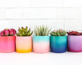 Colorful Gradient Planter - Indoor or Outdoor Planter - choose your colors