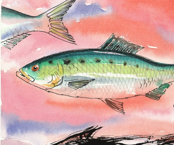 PUMPKINSEED SUNFISH PET FISH PAINTING AMERICAN FISHING ART REAL CANVAS PRINT
