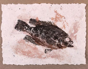"ORIGINAL "" FOSSIL "" ( Fish Rubbing ) on hand made Paper 8.5 X 11 Rock Bass Lake Art Fishing Fisherman Decor by Barry Singer"