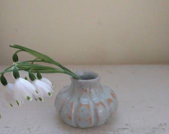 Bud Vase Suscription