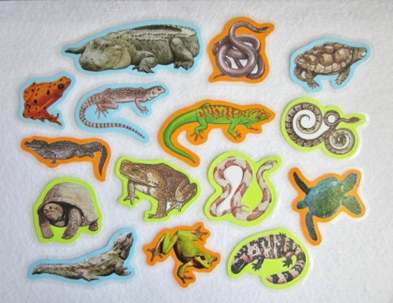 Felt Board Set Reptiles and Amphibians Reptiles Flannel image 0
