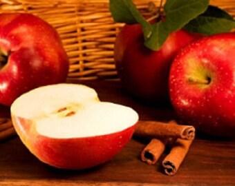 Apple Cinnamon Melter Tart