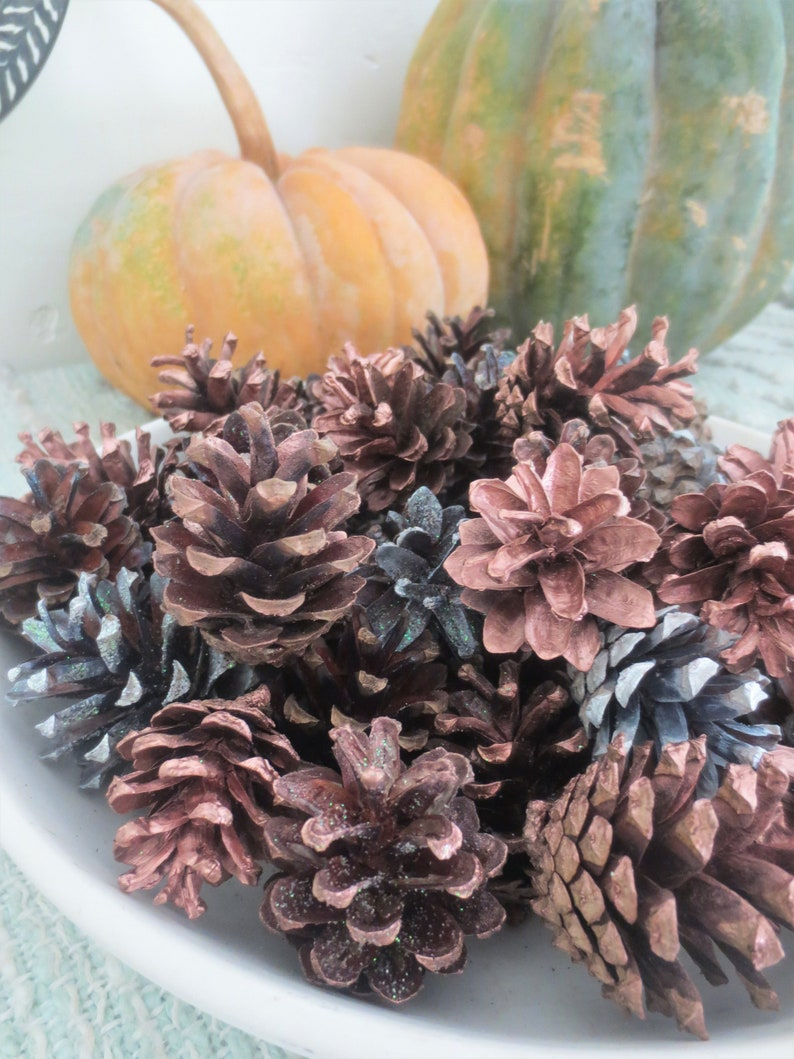Pinecone Bowl Filler Fall Decorations Seasonal Colors Hand Painted Glitter Pine Cone Locally Harvested Gold Mix Pumpkin Spice Collection