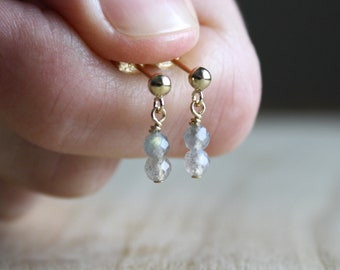 Labradorite Earrings in 14k Gold Fill for Embracing Change and New Ideas
