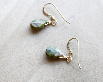 Unakite Earrings in 14k Gold Fill for Emotional Resilience
