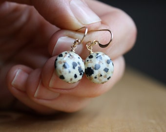 Dalmatian Jasper Earrings in 14k Gold Fill NEW