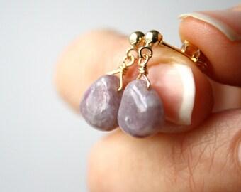 Purple Jasper Earrings on 14k Gold Fill Studs