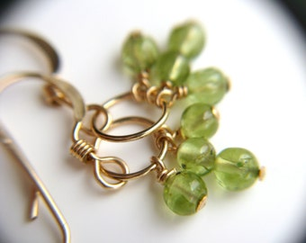 Green Peridot Earrings Gold . August Birthstone Jewelry