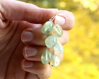 Prehnite Earrings on Sterling Silver Lever Backs for Unconditional Love