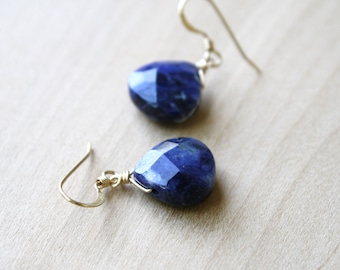 Sodalite Earrings in 14k Gold Fill for Creativity and Intuition