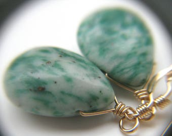Tree Agate Earrings in 14k Gold Fill . Stones for Wealth and Abundance
