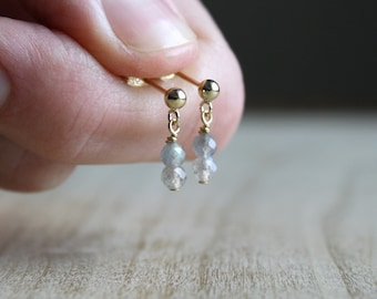 Labradorite Earrings in 14k Gold Fill for Embracing Change and New Ideas NEW