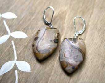 Picture Jasper Earrings . Crystals for Strength