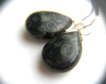 Black Jasper Earrings for Protection
