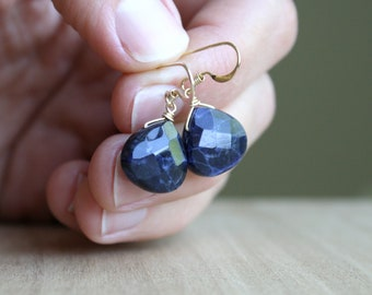 Sodalite Earrings in 14k Gold Fill for an Organized Mind and Being True to Yourself