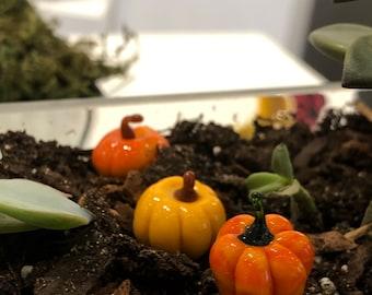 3 Pumpkins patch Lampwork glass plant decorations for pot