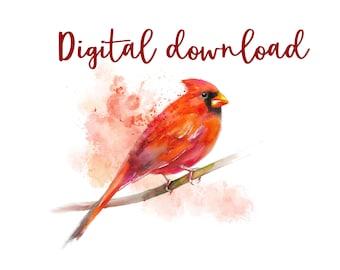 PRINTABLE - Cardinal watercolour painting - digital download