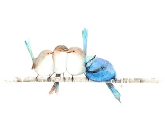 Australian Blue Fairy Wrens on a branch watercolor painting PRINT