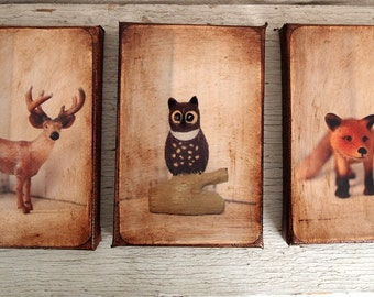 Wall Art  - Toy  Animals  Set of 3 - Art/Photo - 4x6