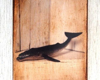 Toy Whale  Art/Photo - Wall Art 4x6