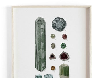 Minerals & Gems - Scientific Illustration. Beautifully textured cotton canvas art print.  Large scale art
