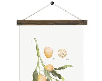 Kumquat Study vol.1- Pine watercolor wall hanging, wood trim art printed on textured cotton canvas. Vintage Scientific Poster chart