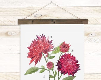 Dahlia Study in Scarlet- botanical watercolor wall hanging, wood trim art printed on textured cotton canvas. Vintage Science Poster chart