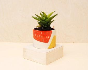 Colorful Planter / Modern Ceramic Plant Pot / Cactus Planter