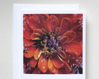 Zinnia and Kale notecard blank card printed original art photography