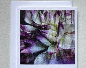 Dahlia on Canvas notecard blank card original art printed