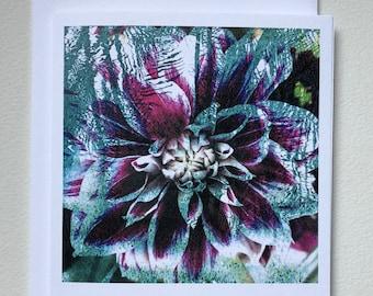 Floating Dahlia notecard blank card printed original photographic art