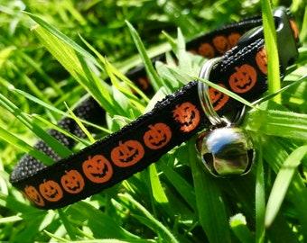 Halloween Pumpkin Jack O Lantern Adjustable Black Breakaway Cat Collar