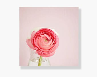 Shabby chic decor, flower canvas wall art, still life art, nature photography, coral, pink, ranunculus, garden flowers - Oh So Pretty