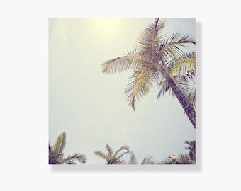 Palm tree photo canvas wall art, coastal decor, tropical decor, coastal wall art, palm tree canvas art - This is my Happy Place