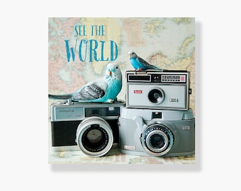 Bird vintage map camera typography photo canvas gallery wrap, pastel, blue birds, wanderlust, travel, vintage cameras - See the World