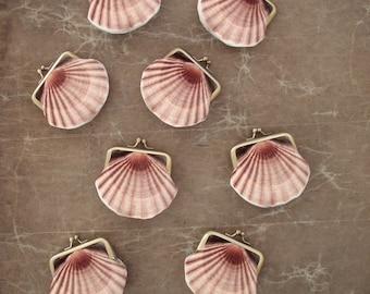 Seashell coin purse, velvet scallop pouch